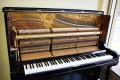 interno,meccanica,pianoforte,verticale,weissbrod wp