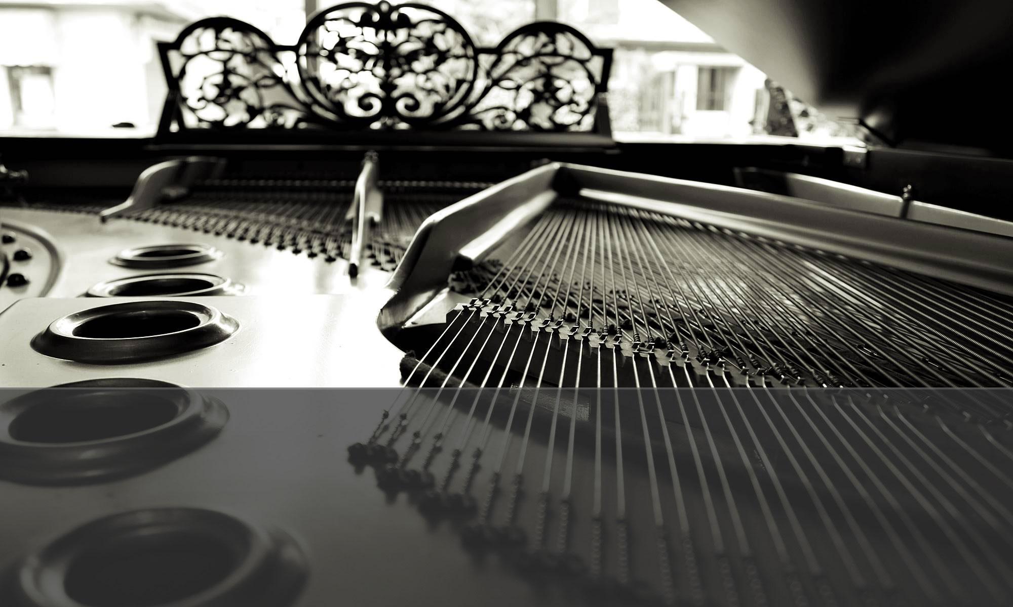 Nardi Strumenti Musicali