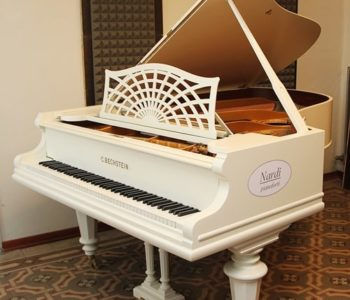 pianoforte a coda bianco c.bechstein vicenza
